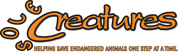 Final Sole Creatures Logo with punchline